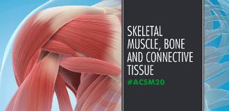 765x370_am20_skeletal muscle