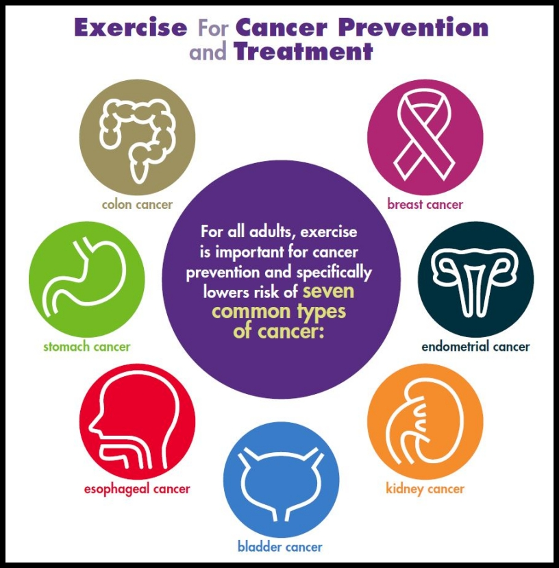 Exercise For Cancer Prevention And Treatment Download