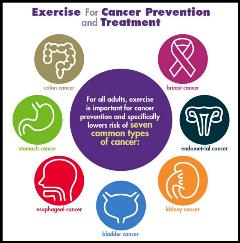 Exercise Cancer Prevention Infographic ACSM