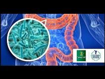 ACSM  Microbiome Health